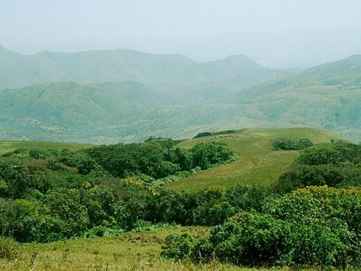 Mambilla Plateau - Taraba State