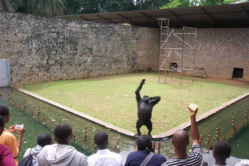 Zoological Garden Ibadan