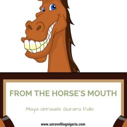 From The Horse's Mouth | Maya Unravels Gurara Falls