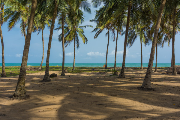 Private-Beach-at-Whispering-Palms-600x400